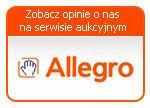 allegro-aukcje